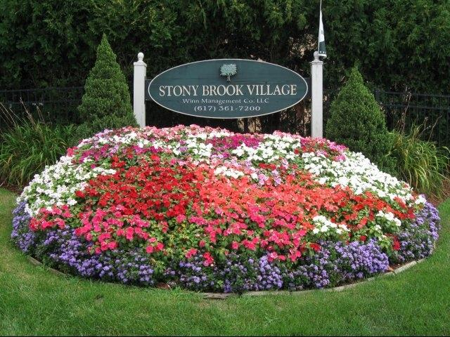 Stony Brook Village Affordable Apartments In Boston Ma Found At Affordablesearch
